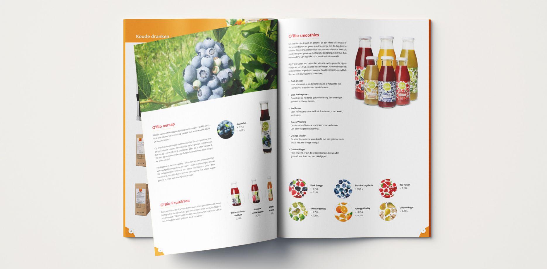 Sunini brochure